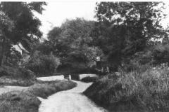 old garden lane ( bottom )